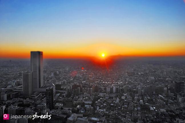 111212-1927.1 - Panoramic view of Tokyo, Japan